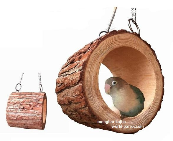 parrot-squirrel-cage-stand-platform-pet-toy-wood-thickness-plancon-wooden-hanging-ladder-shelf-cage