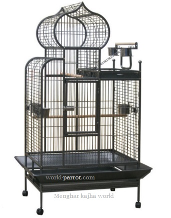 b055-parrot-large-cage-bird-new-style