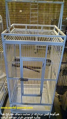 birds_cags_birdcage_parrotcage_dlbr_china_world