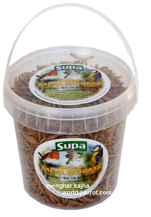 super-Mealworms-supa