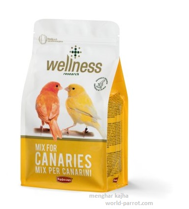 wellness-padovan-mix-for-canaries